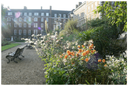 Inner Temple Garden
