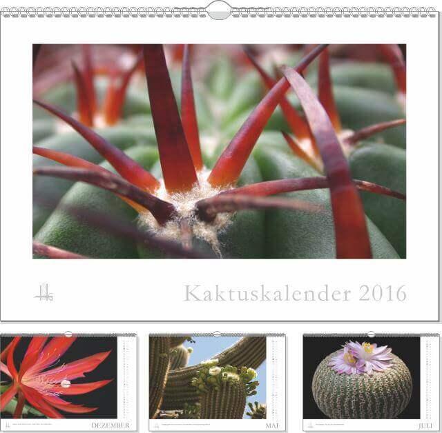 Der Kaktuskalender 2016