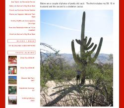Saguaro Trip
