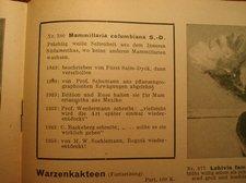 katalog 1955 12