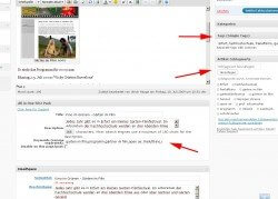 wordpress_multi_tags
