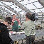 mdr TV - Hier ab vier - Leichter Leben - Test Gartenhandschuhe