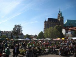 Der 21. Erfurter Blumen- und Gartenmarkt auf dem Domplatz
