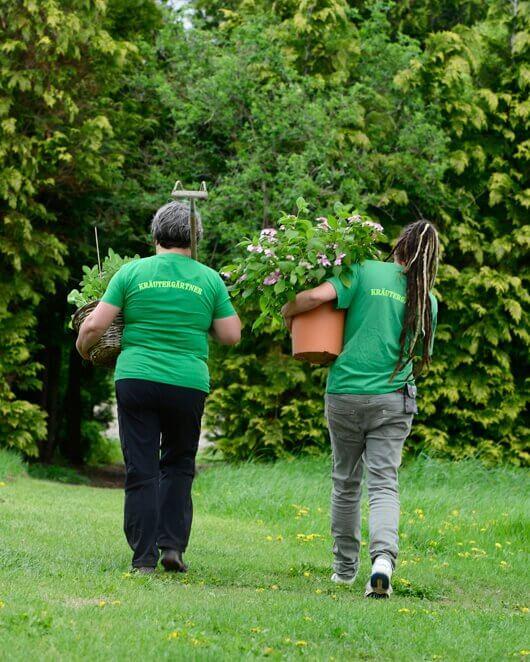 Kräutergärtner auf dem Weg
