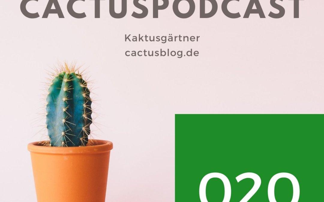 CactusPodcast 020 Kaktus zu groß vor dem Winter – was nun?