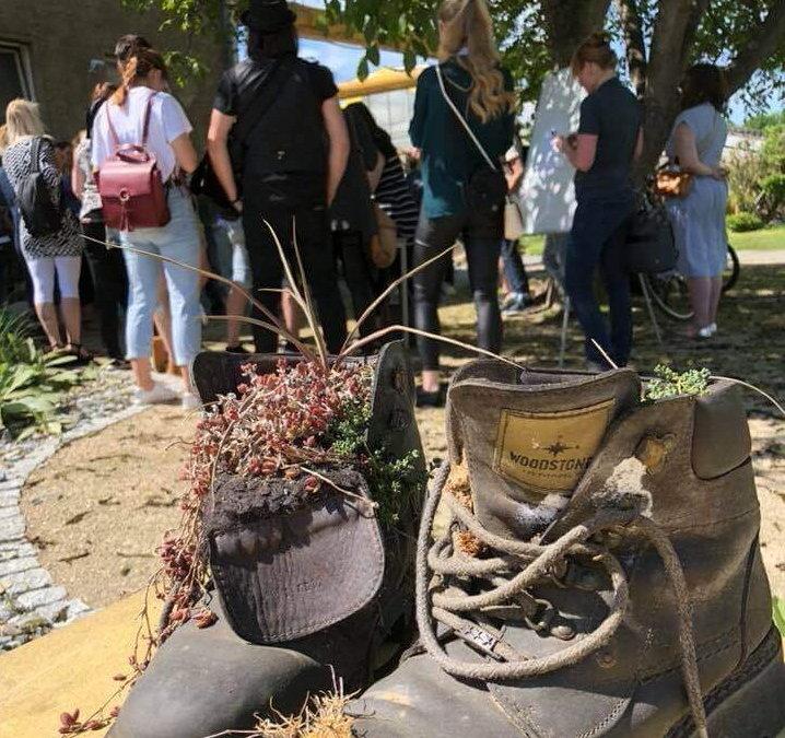 KaktusWalk – ein spitzer Instawalk in Erfurt